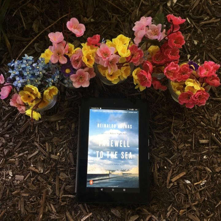 Farewell to the Sea: A Novel of Cuba by ReinaldoArenas