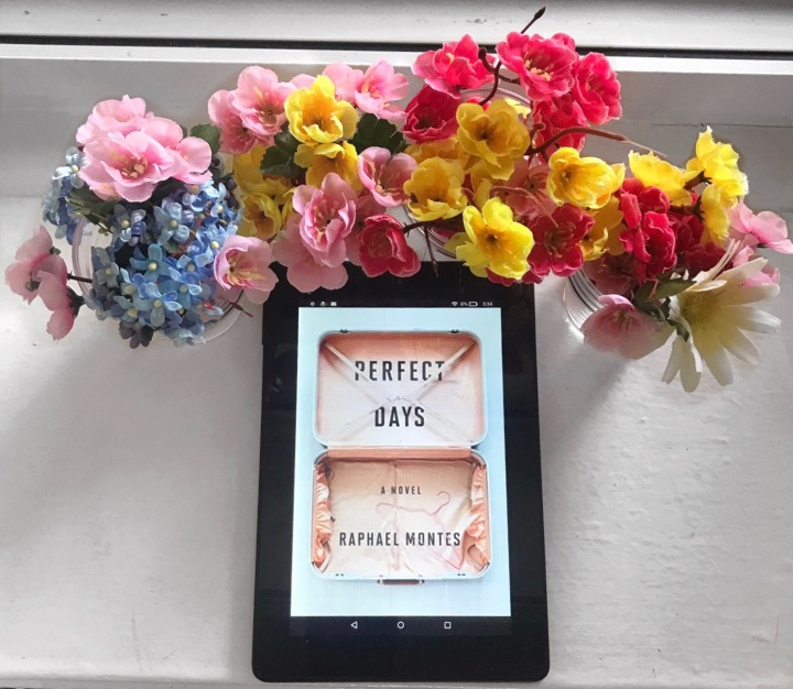 Review of Perfect Days by RaphaelMontes